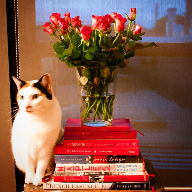 French books, flowers and Chandon
